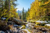 Season changing, first snow and autumn aspen trees in  Rocky Mountain National Park, Colorado, USA.  poster