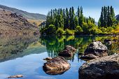 Magic New Zealand. The surroundings of the Cromwell. Ideal place for a picnic. Cypress alley and hug poster