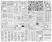 Mega Set Of Doodle Sketch Frame, Line, Corner And Divider poster