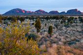 stock photo of uluru-kata tjuta national park  - Olgas - JPG