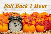 Fall Back 1 Hour Time Change Message With A Retro Alarm Clock With Orange Pumpkins With Fall Leaves  poster