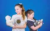 Kids Cute Girls Play With Soft Toys. Happy Childhood. Child Care. Sisters Or Best Friends Play With  poster