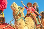 Happy Camel Riding Couple In Camel Caravan. Australian Desert Of Northern Territory. Caucasian Touri poster