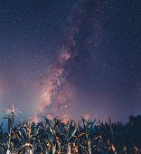 Milky Way Sky At Night  Milky Way Sky At Night poster