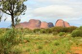 picture of uluru-kata tjuta national park  - A view from distance at Kata Tjuta known as Olgas - JPG