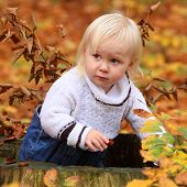 Funny kid playing peek a boo in autumn forest.