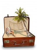 pic of bimbo  - Blonde woman on the beach Package beach vacation retro suitcase - JPG