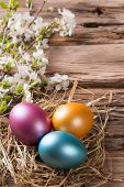 Easter still life with traditional decorative eggs in nest