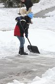 picture of snow shovel  - Lady shoveling the deep snow off her driveway after a snow storm - JPG