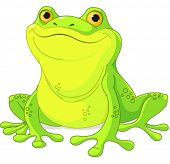 stock photo of cute frog  - Illustration of cute green frog  - JPG
