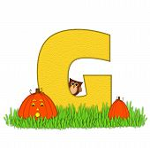 Alphabet Pumpkin Patch G