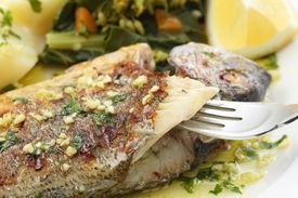 stock photo of turnip greens  - very fresh seabream fish grilled with turnip greens  - JPG