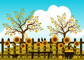 image of orchard  - vector picket fence with sunflowers and apple orchard - JPG