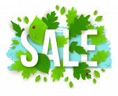 foto of water bug  - Sale Text with Spring Green Leaves - JPG