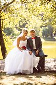 stock photo of sitting a bench  - Newly married smiling couple sitting on bench under tree at river bank - JPG