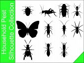 stock photo of cricket insect  - A silhouette collection of household pests in vector form - JPG