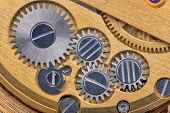 foto of gold tooth  - macro of gold and silver clockworks - JPG