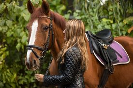 picture of hackney  - Closeup photo of beautiful woman holding horse by rein - JPG