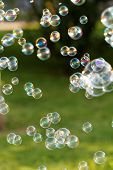 picture of blowers  - The rainbow bubbles from the bubble blower
