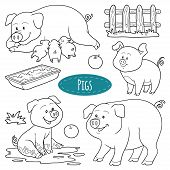image of baby pig  - Set of cute farm animals and objects vector family pigs - JPG