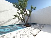 picture of quadrangles  - Modern exterior walled patio with a tropical tree and ornamental bed of white rocks for a sunny outdoor living area and healthy lifestyle - JPG