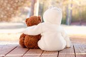 pic of baby bear  - Outdoor image of a baby in a white fur suit with its arm around a brown teddy bear - JPG