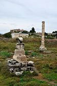 picture of artemis  - The Temple of Artemis was a wonder of the ancient world - JPG
