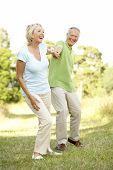 Постер, плакат: Пожилые пары прогулки в сельской местности