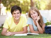 pic of teenage boys  - Teenage Student Couple Studying In Park - JPG
