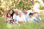 image of 70-year-old  - Portrait Of Extended Family Group In Park - JPG
