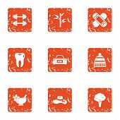 Physical Fitness Icons Set. Grunge Set Of 9 Physical Fitness Vector Icons For Web Isolated On White  poster