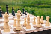 Part Of The Chess Board With Chess Pieces On Green Natural Background. Selective Focus On White Piec poster