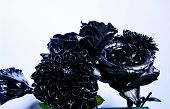 Eternal Beauty. Botany Concept. Forging And Sculpture. Beautiful Black Silver Flower. Floral Shop. M poster