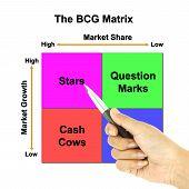 pic of cash cow  - a pen pointer the BCG Matrix chart  - JPG