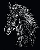 Hand Drawing Horse Portrait. Horse Head With Long Mane In White Color Isolated On Black Background.  poster