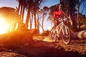 stock photo of skid  - Mountain Bike cyclist riding single track at sunrise healthy lifestyle active athlete doing sport - JPG