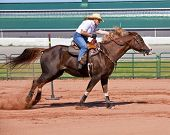 foto of barrel racer  - Western horse and rider competing in pole bending and barrel racing competition - JPG