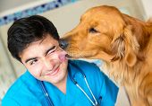 stock photo of tongue licking  - Cute dog giving a kiss to the vet after a checkup - JPG