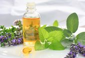stock photo of bottles  - Closeup of oil bottle with fresh green herbs and aromatic flowers - JPG