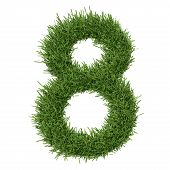 stock photo of arabic numerals  - Arabic numeral made of grass - JPG