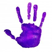 stock photo of violets  - a violet handprint on a white background - JPG