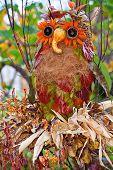 image of scarecrow  - Creative owl scarecrow in a countryside garden - JPG