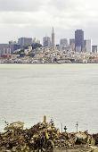 picture of alcatraz  - The San Francisco skyline in California United states of America from Alcatraz island - JPG