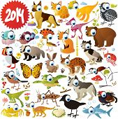 foto of arctic fox  - extra big vector cartoon animals set  - JPG