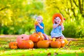 image of baby cowboy  - Happy children at pumpking patch during Halloween little girl in a blue dress boots and cowboy hat and baby boy having fun together trick or treating on a sunny autumn day - JPG