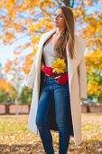 image of overcoats  - Stylish woman in autumn fashion wearing an elegant white overcoat and red mittens standing outdoors in a park with a handful of yellow fall leaves - JPG