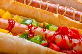 picture of wiener dog  - All beef dogs variantion of hot dogs onions beef garlic chips paprika chilli mustard ketchup - JPG