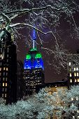 picture of empire state building  - The Empire state building as seen through the icy trees in Bryant Park. ** Note: Visible grain at 100%, best at smaller sizes - JPG