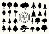 stock photo of bonsai  - Isolated black Tree silhouettes icons set - JPG