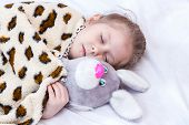 image of hare  - Little girl sleeping in an embrace with a toy hare under a blanket closeup - JPG